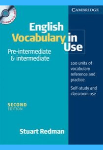 Download English vocabulary in use pre-intermediate and intermediate Book PDF​